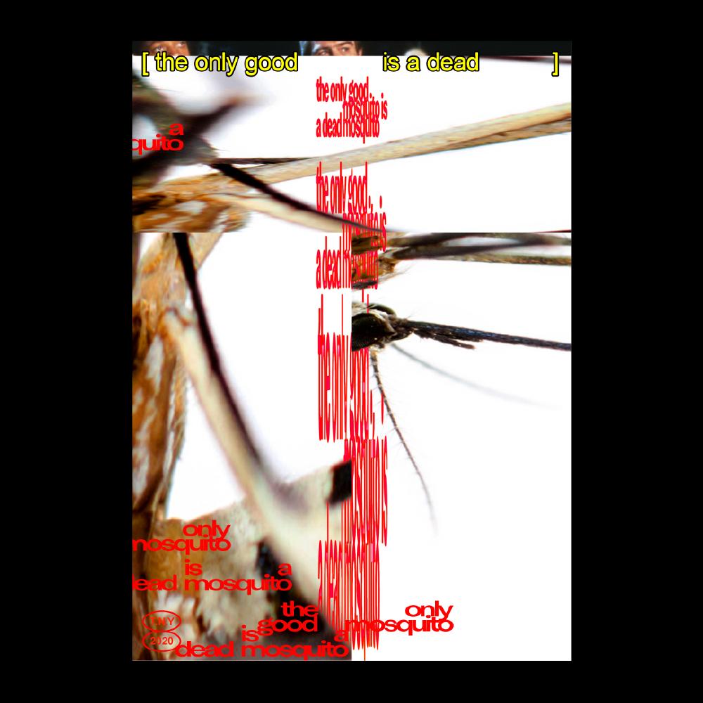 timesnewyoman - mosquitos